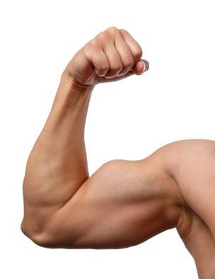 Blütenpollen können den Muskelaufbau gezielt unterstützen.